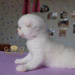 возраст 1 месяц